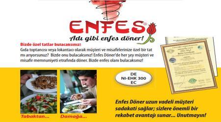 ENFES
